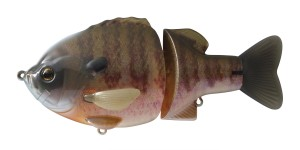 ghost gill