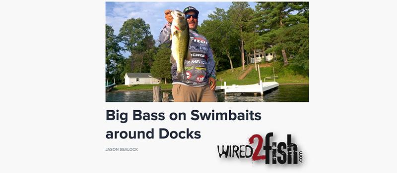 Big Bass on Swimbaits around Docks